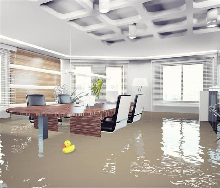 Commercial Commercial Water Damage Effects in Charlotte